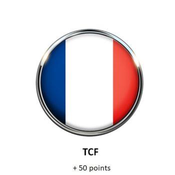 Kurs języka francuskiego przygotowujący do egzaminu TCF Online